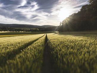 ефективно земеделие